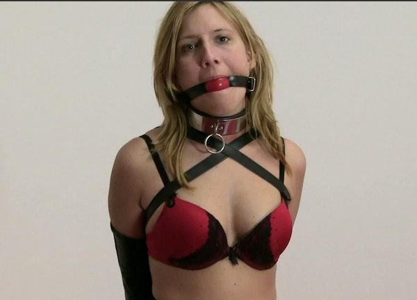Free bondage videos and stories