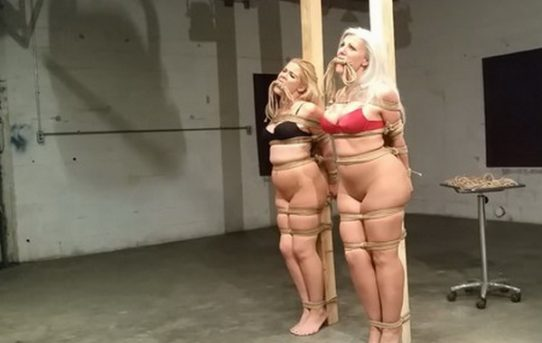 Bound to pole with rope have